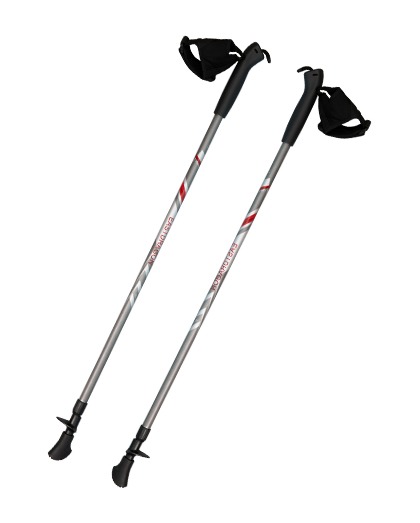Twist Lock Aluminum Walking Pole