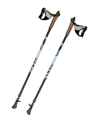 2-section Inner Anti-shock Walking Pole