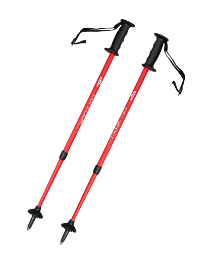 EDS42 Custom Cross Country Ski Pole