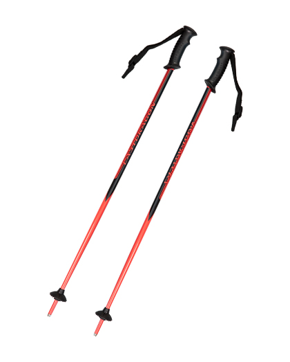 What material is good for ski poles