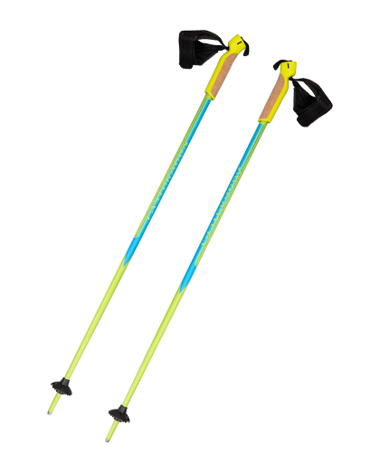 Shopping Around For an Aluminum Ski Pole