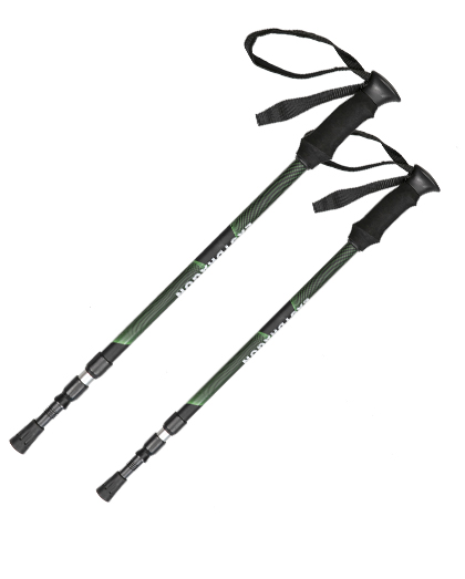 Choosing ski equipment and the role of ski poles